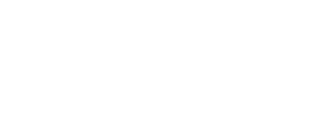RogueBricks Logo